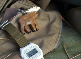 Czy warto wymieniać paski do zegarków casio?