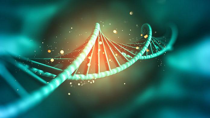 Jakie badania genetyczne wykonać w ciąży